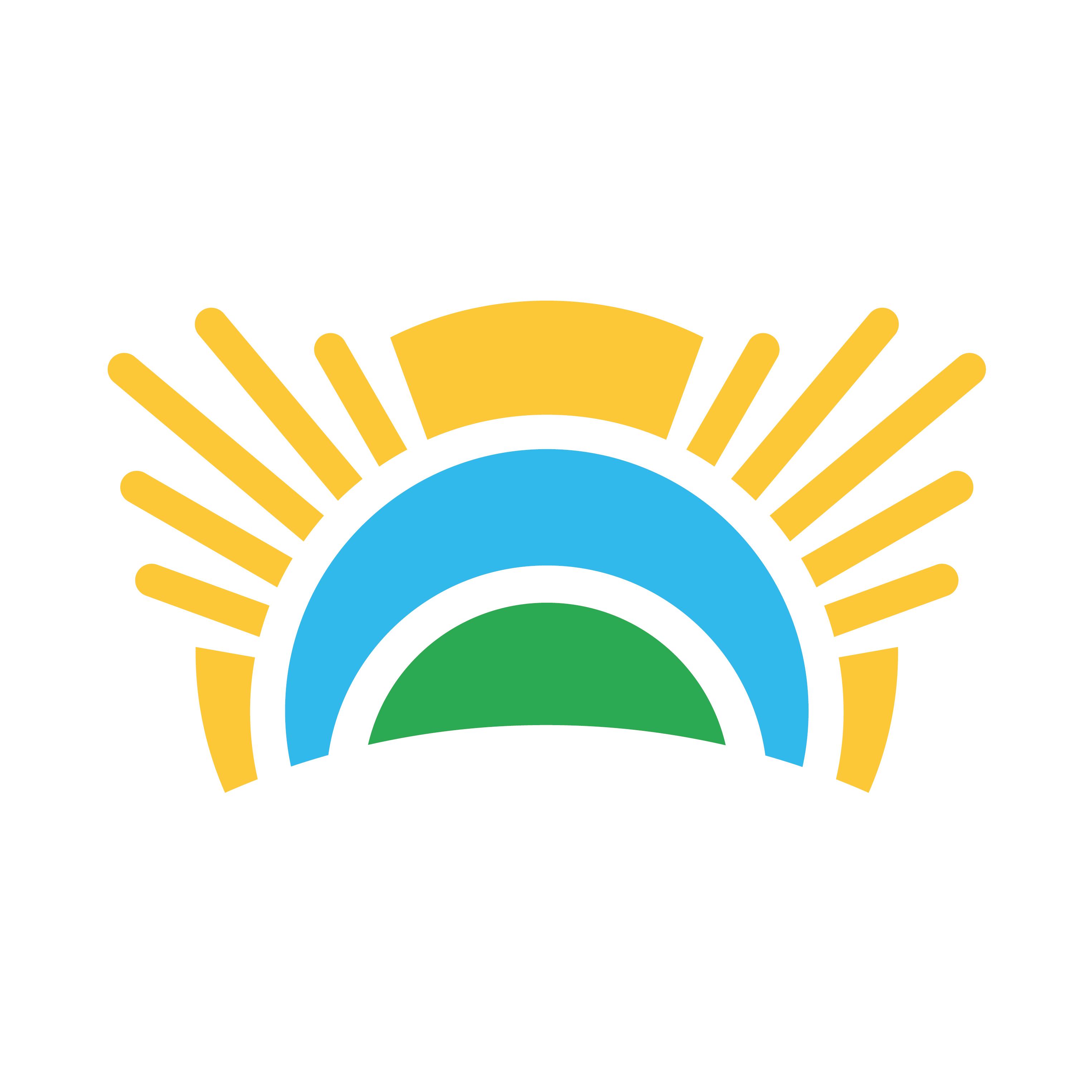 Chief Sustainability Office Logo
